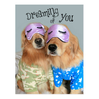 Golden Retriever Dreaming of You Valentine's Day Postcard