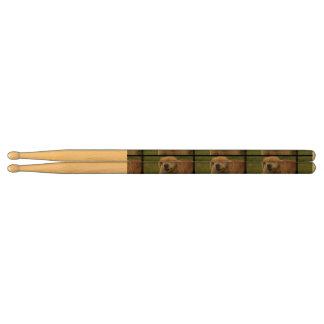 Golden Retriever Drumsticks