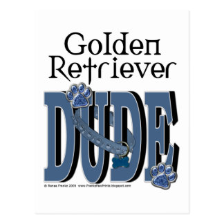 Golden Retriever Dude Postcard