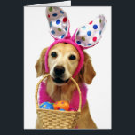 """Golden Retriever Easter Bunny Card<br><div class=""""desc"""">Celebrate Easter with an adorable photo greeting card from our SNAPshotz collection. This Easter card features a sweet Golden Retriever with polka dot bunny ears holding a basket full of decorated Easter eggs.</div>"""