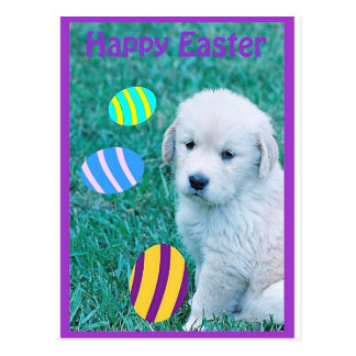 Golden Retriever Easter Puppy Cards & Gifts