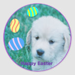 Golden Retriever Easter Puppy Cards & Gifts Classic Round Sticker