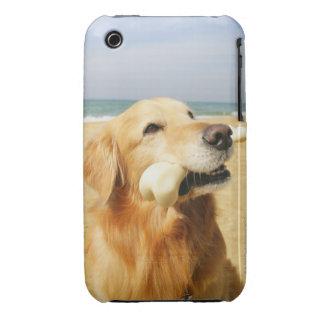 Golden Retriever eating bone iPhone 3 Case-Mate Case