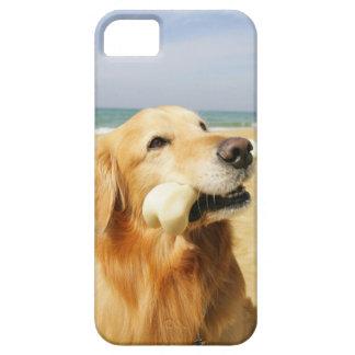 Golden Retriever eating bone iPhone SE/5/5s Case