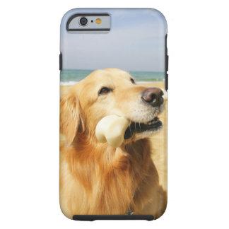 Golden Retriever eating bone Tough iPhone 6 Case