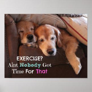 Golden Retriever Exercise Demotivational Poster