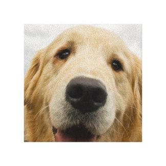 Golden retriever feliz impresiones en lona