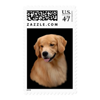 Golden Retriever Frisco Postage Stamp