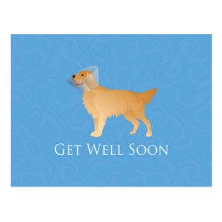 Golden Retriever Get Well Soon Postcard
