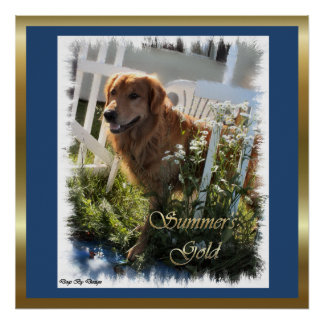 Golden Retriever Gifts Art Prints