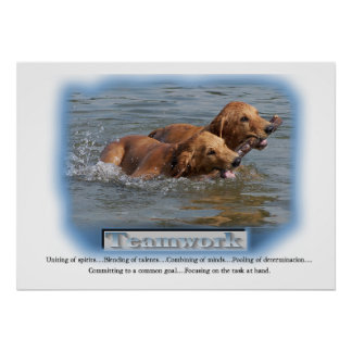 Golden Retriever Gifts Poster