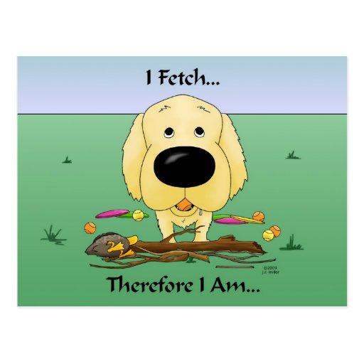 Golden Retriever(Goldens) I Fetch..Postcard Postcard
