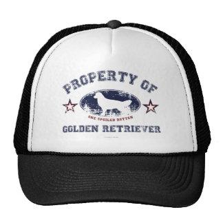 Golden retriever gorro de camionero