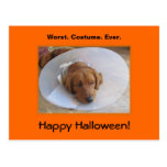 Golden Retriever Halloween Postcard