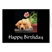 Golden Retriever Happy Birthday Card