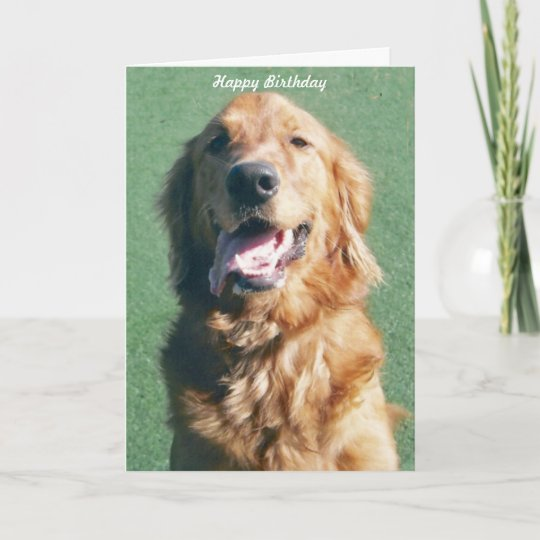 Golden retriever happy birthday greeting card zazzle golden retriever happy birthday greeting card m4hsunfo