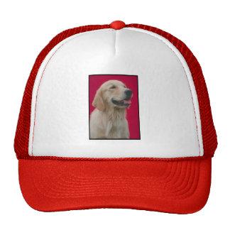 Golden Retriever Mesh Hats