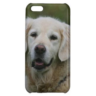 Golden Retriever Headshot 2 Case For iPhone 5C