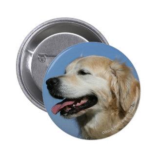 Golden Retriever Headshot 4 Button