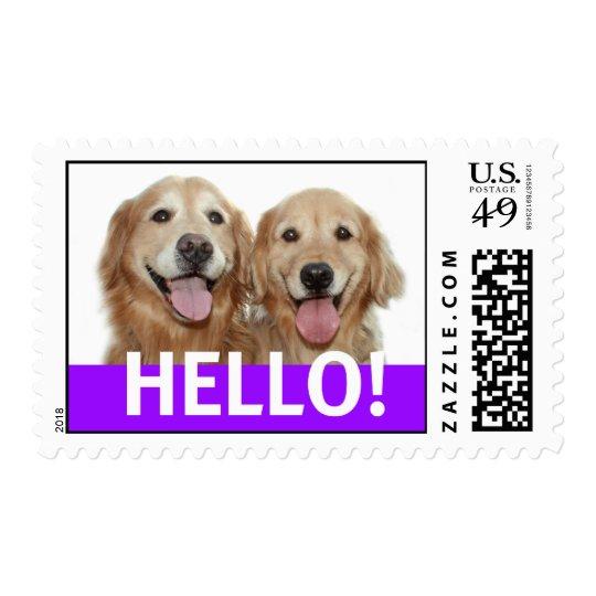 Golden Retriever Hello Postage Stamp