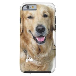 Golden retriever hermoso del perro y su hueso funda de iPhone 6 tough