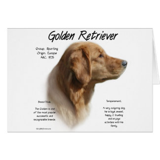 Golden Retriever History Design Card