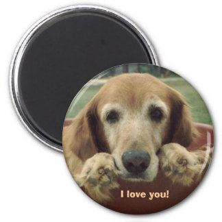 "Golden Retriever ""I Love You!"" Magnet"