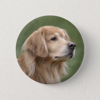 Golden Retriever in Closeup Button
