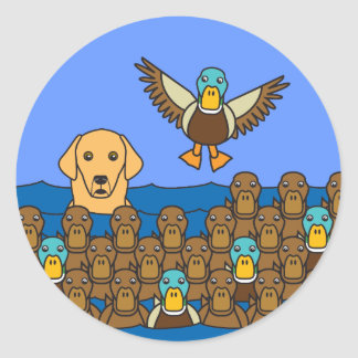 Golden Retriever in the Ducks Classic Round Sticker