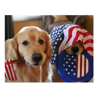 Golden Retriever Independence Day Postcard Postcard