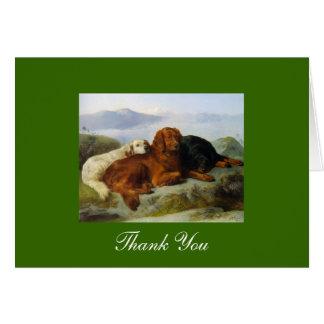 Golden Retriever, Irish & Gordon Setter Thank You Cards