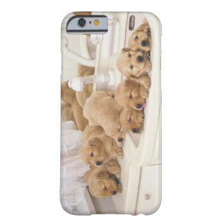 Golden Retriever; is a relatively modern and 2 Barely There iPhone 6 Case