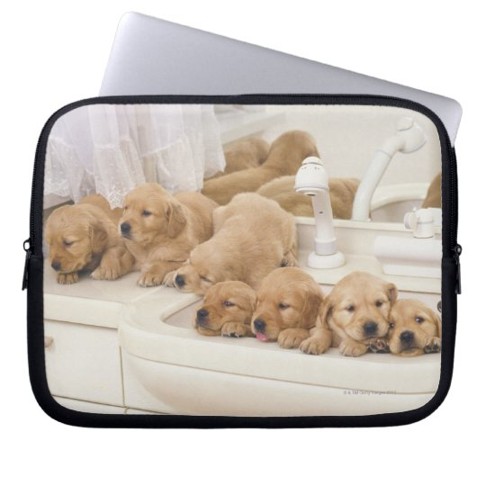 Golden Retriever; is a relatively modern and 2 Computer Sleeve