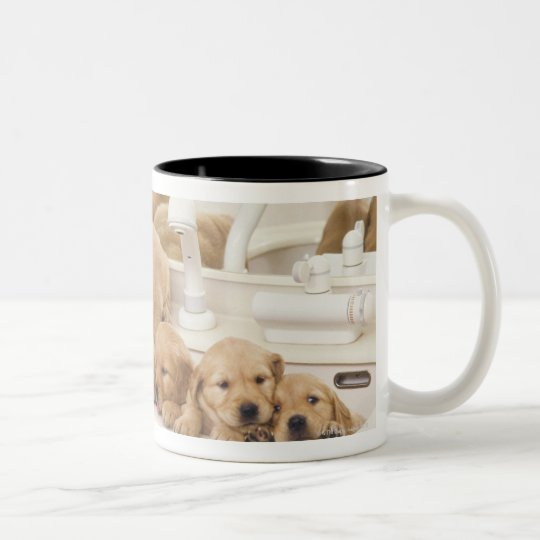 Golden Retriever; is a relatively modern and 2 Two-Tone Coffee Mug