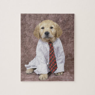 Golden Retriever; is a relatively modern and Puzzles