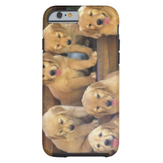 Golden Retriever; is a relatively modern and Tough iPhone 6 Case