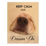 Golden Retriever Keep Calm Dream On Postcard