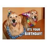 Golden Retriever Let's Party Birthday Postcard