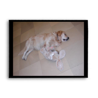 Golden retriever lindo el dormir con el conejo del