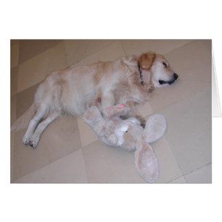 Golden retriever lindo el dormir con el conejo del tarjeta de felicitación