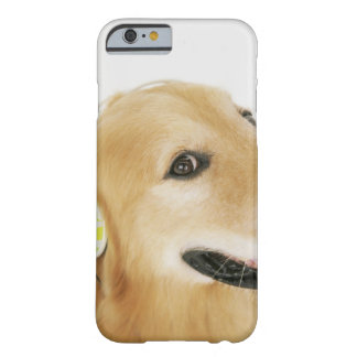Golden retriever listening to music barely there iPhone 6 case