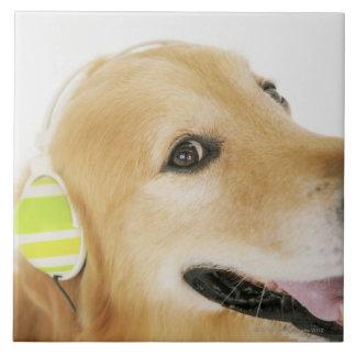 Golden retriever listening to music ceramic tile
