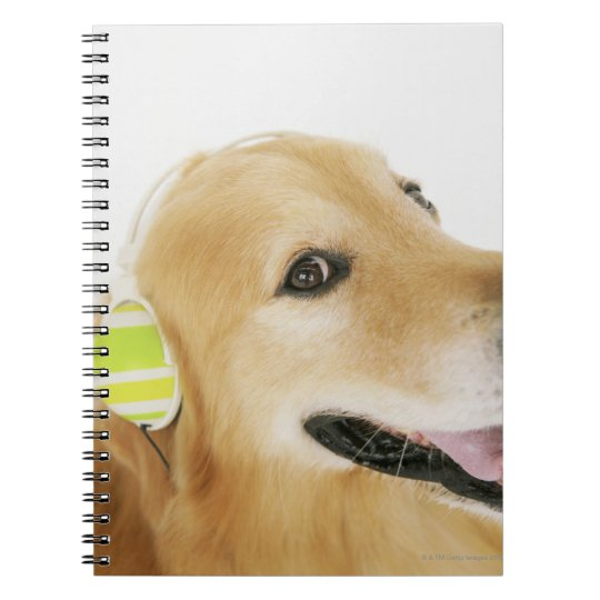 Golden retriever listening to music spiral notebook