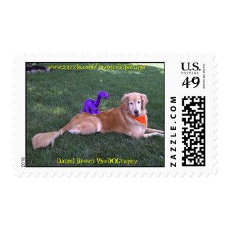 Golden Retriever Lounging Postage Stamp