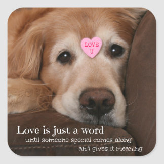 Golden Retriever Love Is Just a Word Square Sticker