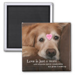 Golden Retriever Love Is Just a Word Valentine 2 Inch Square Magnet