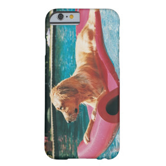 Golden Retriever Lying on an Air Bed in a Barely There iPhone 6 Case