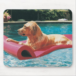 Golden Retriever Lying on an Air Bed in a Mouse Pad