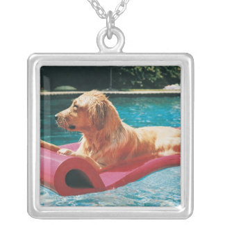 Golden Retriever Lying on an Air Bed in a Silver Plated Necklace