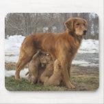 Golden Retriever Maia and Pups Mousepad